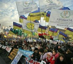 Участник акции протеста против принятия нового Налогового кодекса на Майдане Независимости