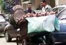 Последствия беспорядков в Египте